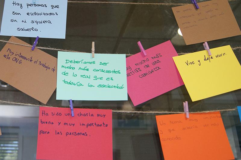 Educación primaria - Valores, respeto y convivencia