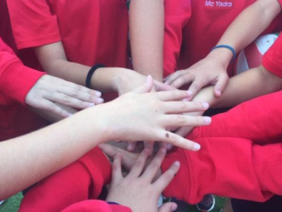 Educación primaria: Deporte - Colegio Alarcón
