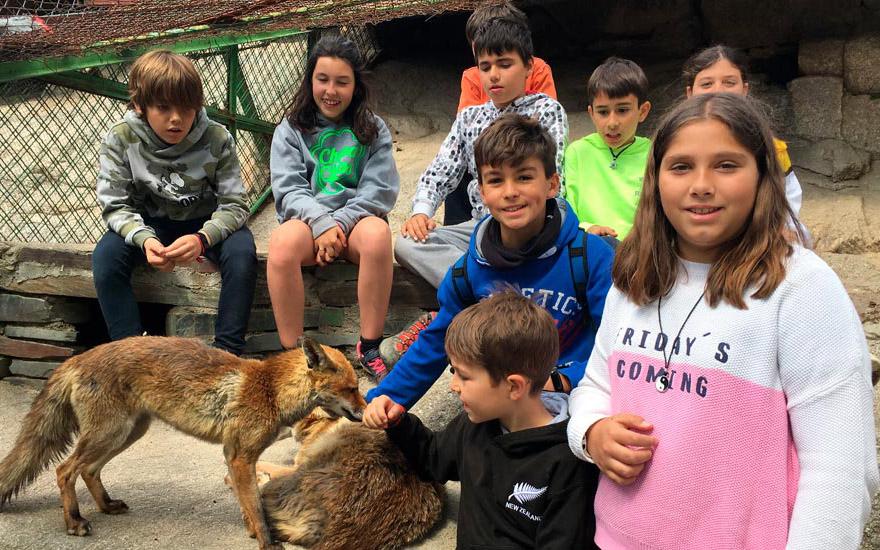 Actividad complementaria granja - Colegio Alarcón